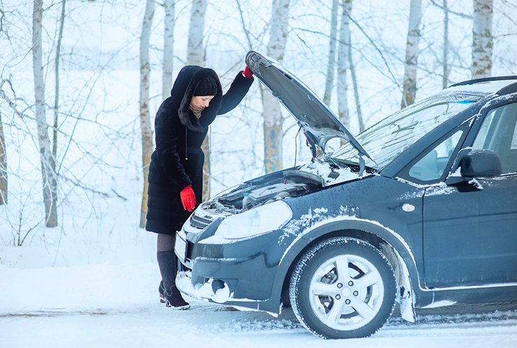 Give your car a winter health check