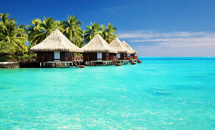 Our Dream Holiday Destinations